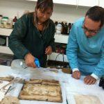 "<a class=""standard-btn default-btn"" href=""https://www.scuolemestieridarte.it/scuola/centro-di-restauro-materiale-cartaceo/"">Centro di Restauro Materiale Cartaceo</a>"